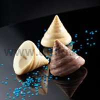 Seashell mold