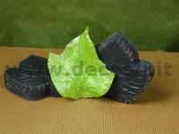 GrapeVine Leaves mold
