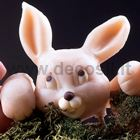 Bunny Snout mold