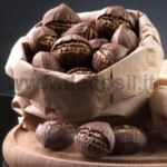 Roast Chestnut mold